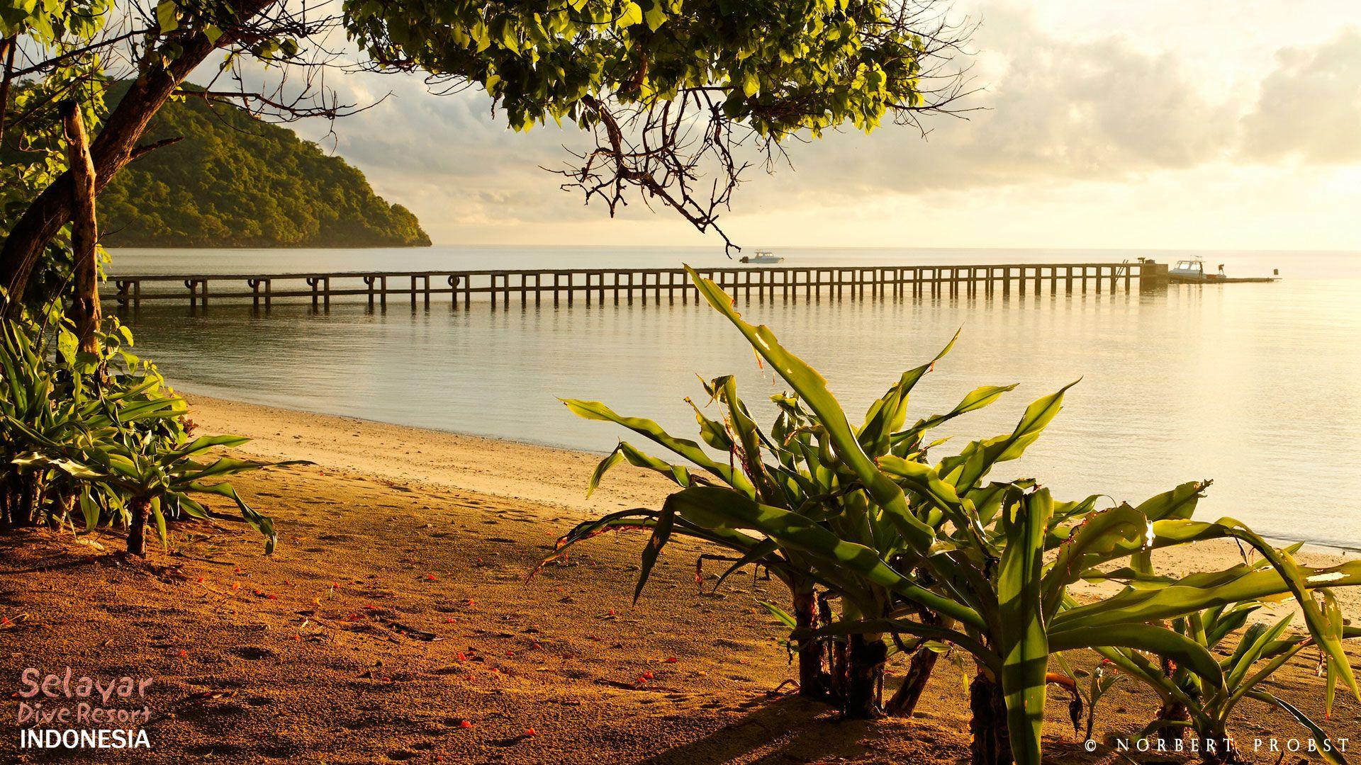 White Sand Beach Sulawesi Indonesia