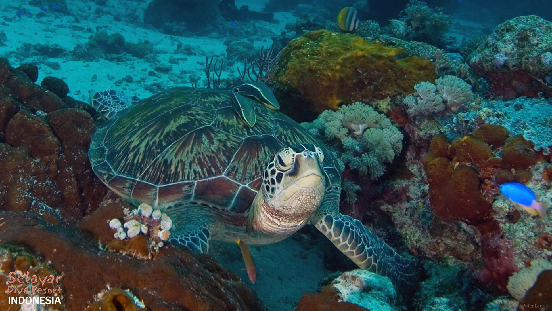 marine park Eco Resort