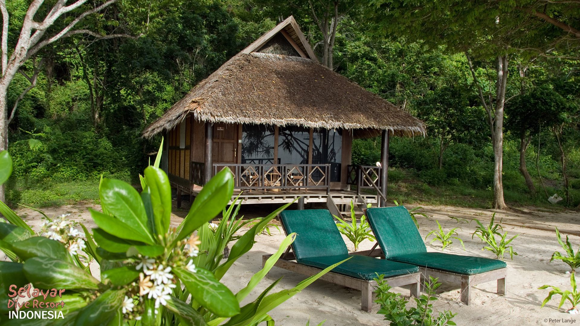 Private Beach Bungalow Indonesia Sulawesi
