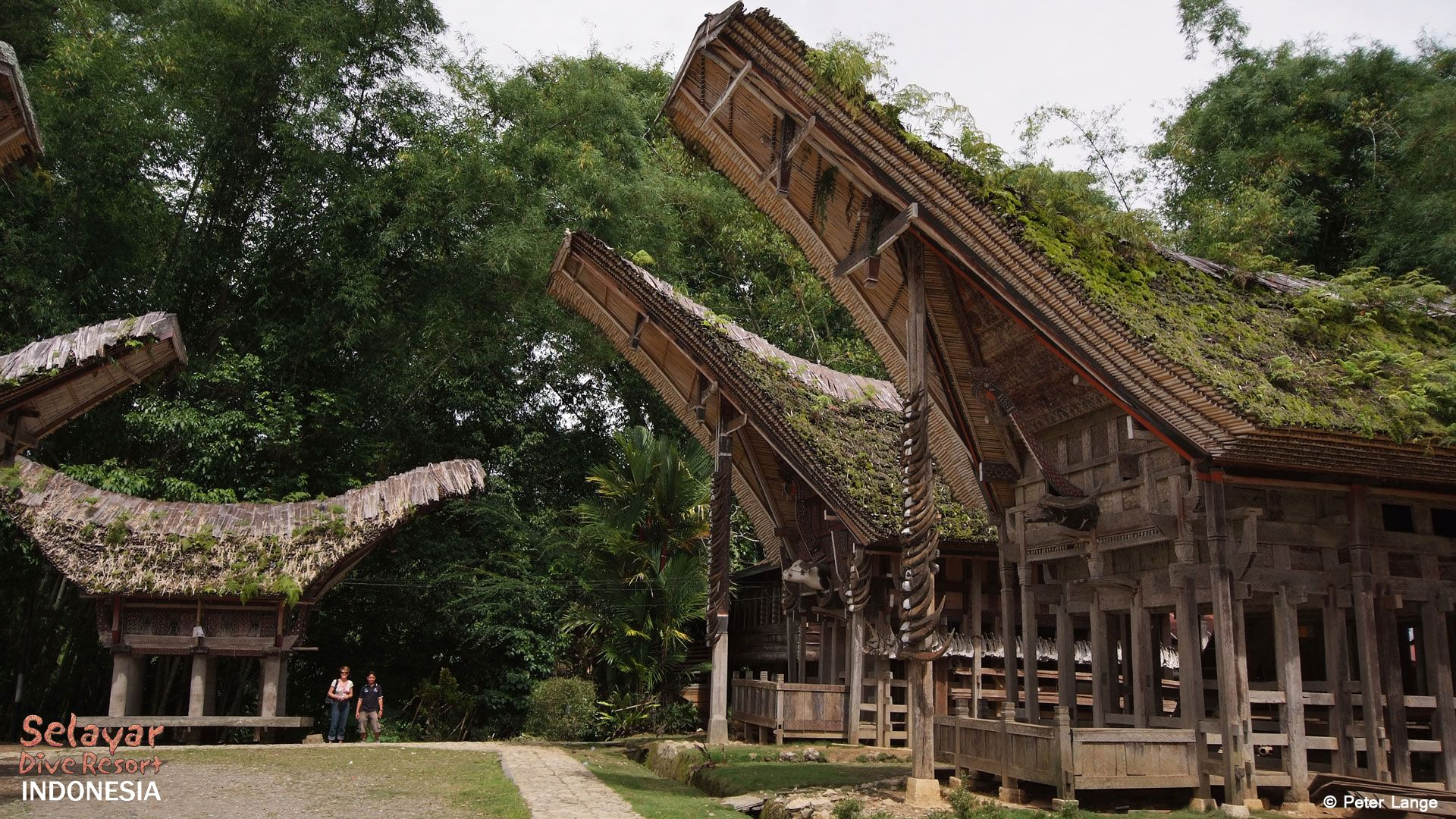 Tana Toraja House Indonesia