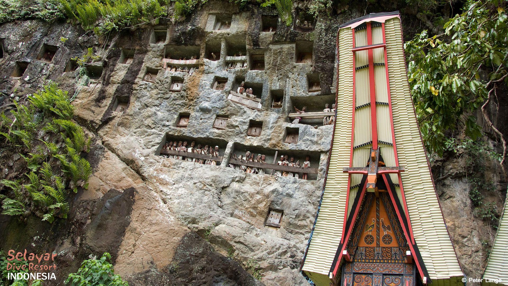 Tana Toraja. Foto: Selayar Dive Resort