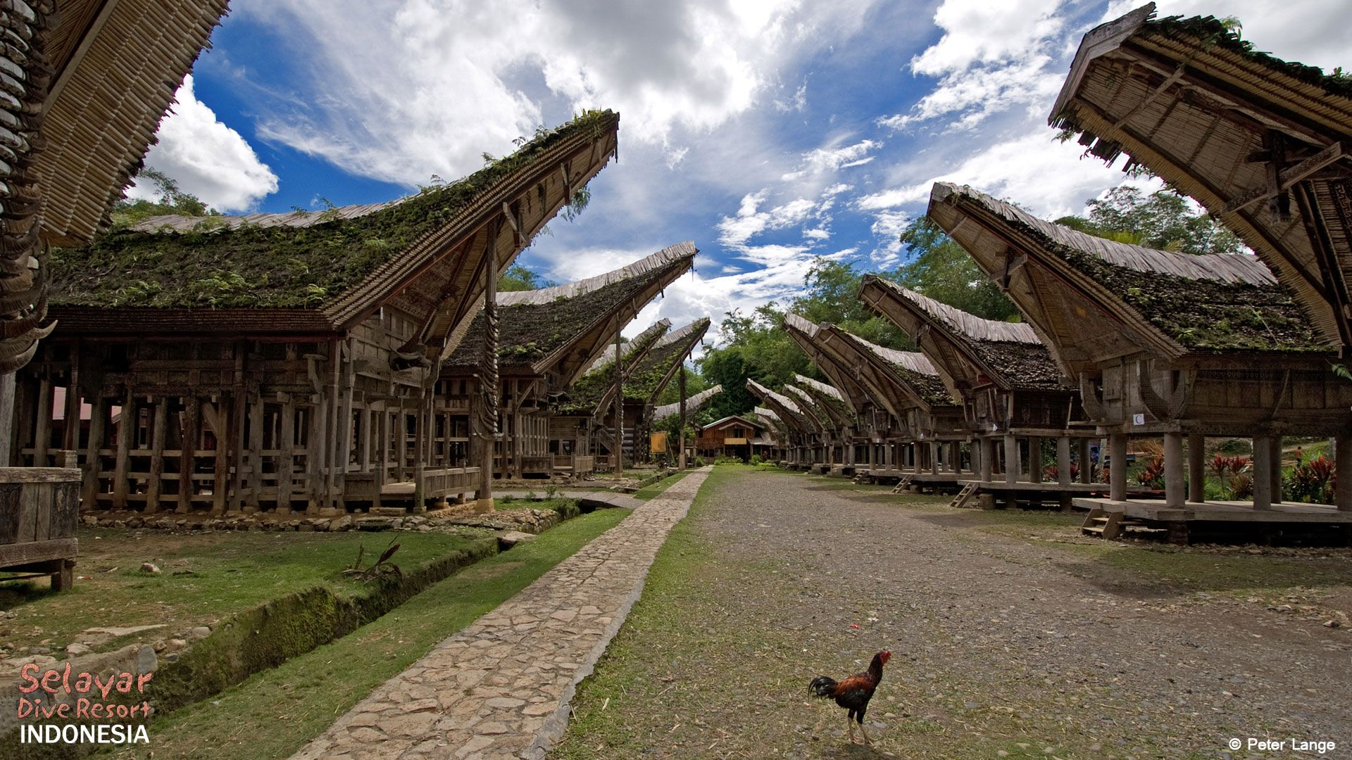 Tana Toraja Village south Sulawesi Indonesia